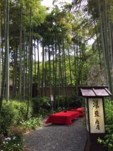 湯豆腐嵯峨野 庭
