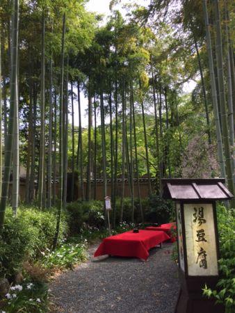 京都・嵐山 新緑のお出かけ 嵯峨豆腐と川端康成の「古都」の世界