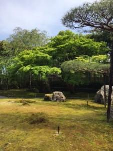 光明寺 庭