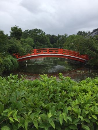 京都 雨の神泉苑 一人の朝