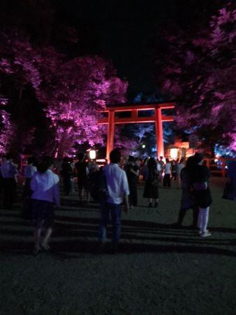 世界遺産・下鴨神社 夏の終わりのライトアップ