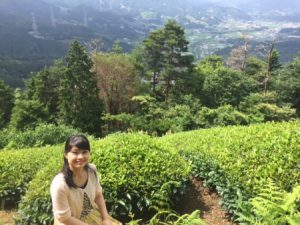 京都・和束町 抹茶のふるさとへ。茶畑ツアーと抹茶飲み比べ体験